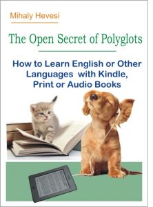 Book Cover: The Open Secret of Polyglots